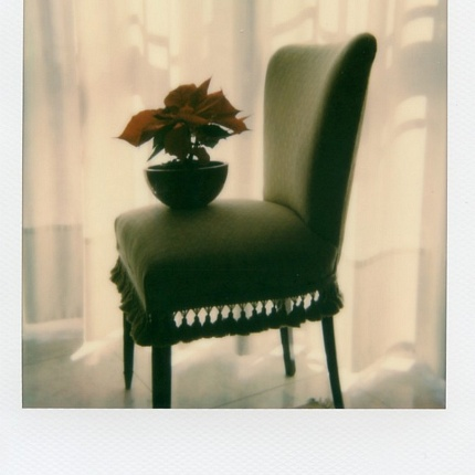 SUNDAY MORNING - POLAROIDS