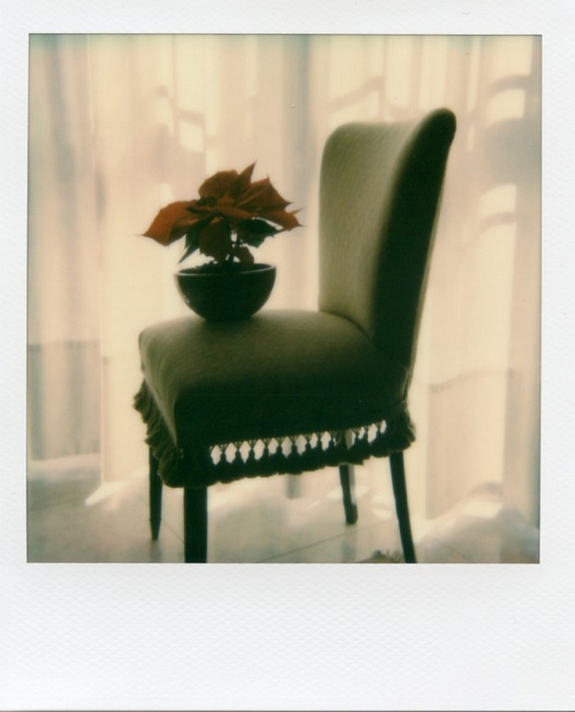 SUNDAY MORNING - POLAROID SX70 CM 10,7 X CM 8,8